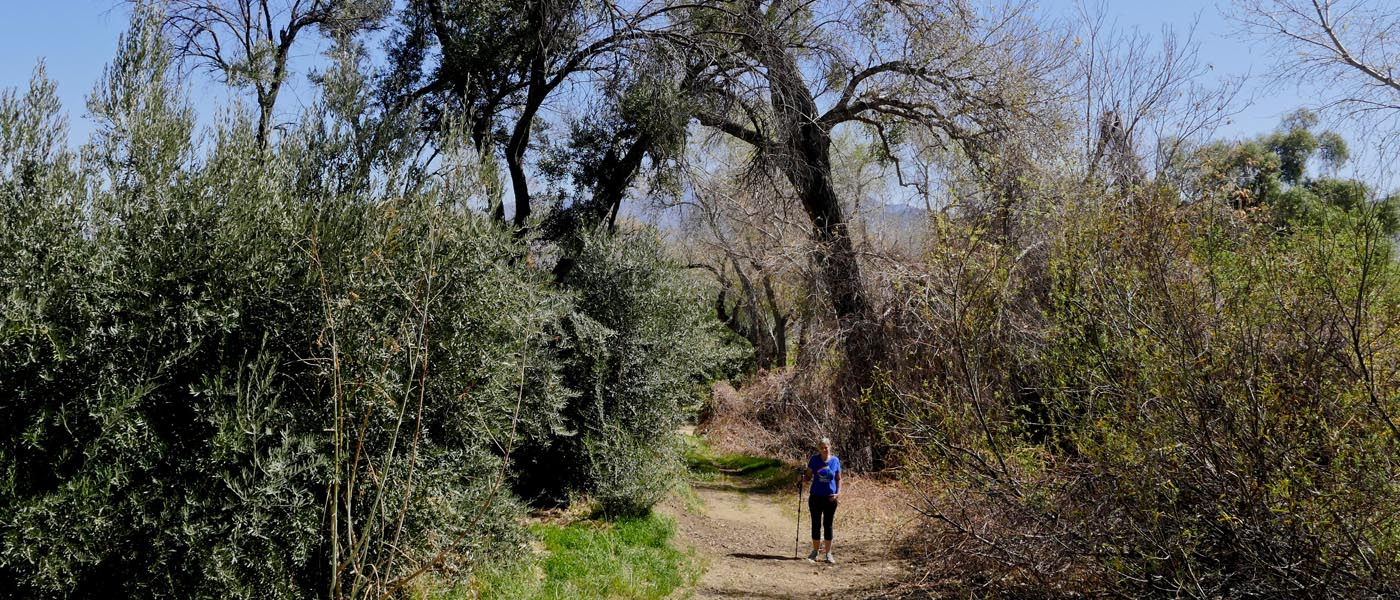Gilman Ranch Trail image