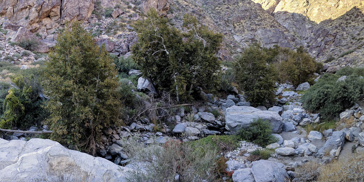 Tahquitz Canyon Hike